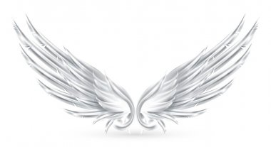 Wings White, eps10
