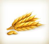 Wheat, vector icon