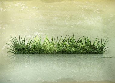 Grass, old-style vector