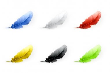 Feathers set, vector