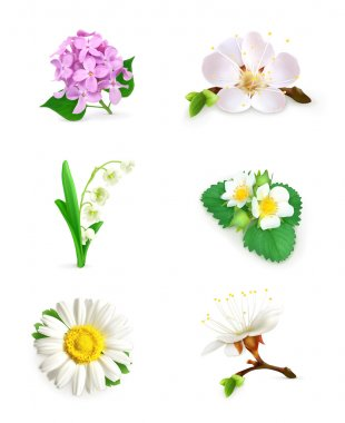 Spring flowers vector set