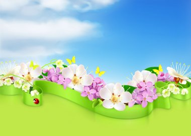 Spring flowers and clouds, vector background