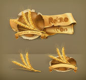 Photo Ears of wheat, vector icon