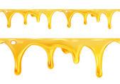 sladký med nekape bezproblémové vektor