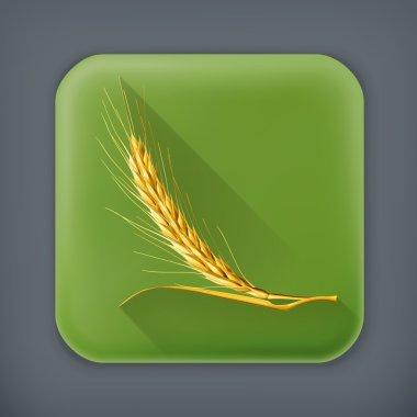 Ear of wheat, long shadow vector icon