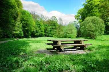 Picnic place in forest opening
