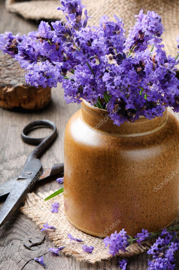 Bunch of freshly cut lavender on wooden table