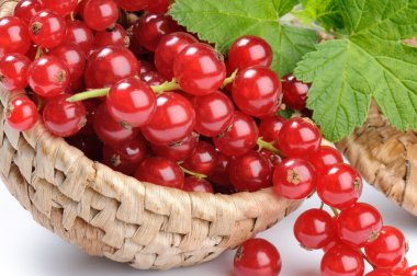 Red currant in the basket