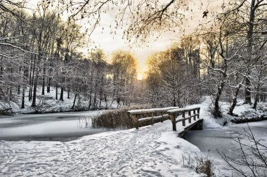 Wooden bridge under snow