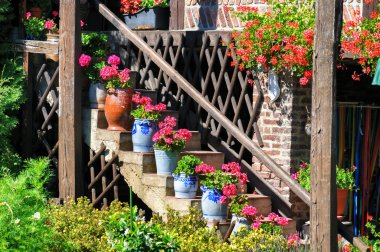 Staircase with flowers in pots