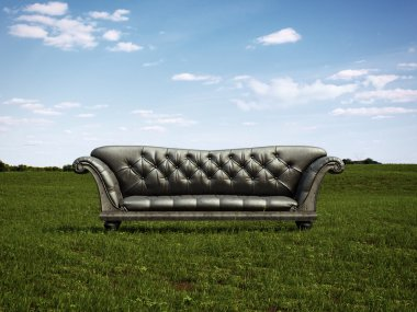 Black sofa on a green meadow