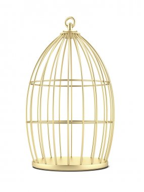 Golden Cage isolated on a white background. 3d render stock vector