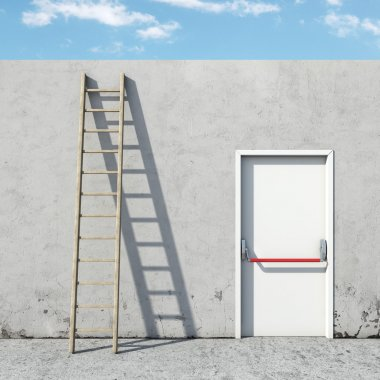 choice between the door and ladder