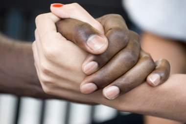 Male and  female handshaking