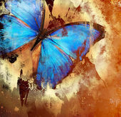 Photo Background in grunge style with butterfly