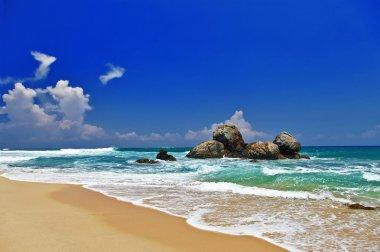 Sri lanka' beaches