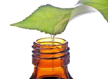 Homeopathy balm