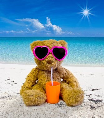 teddy bear in the beach