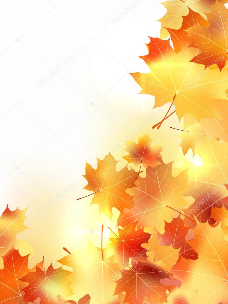 Background with maple autumn leaves. plus EPS10