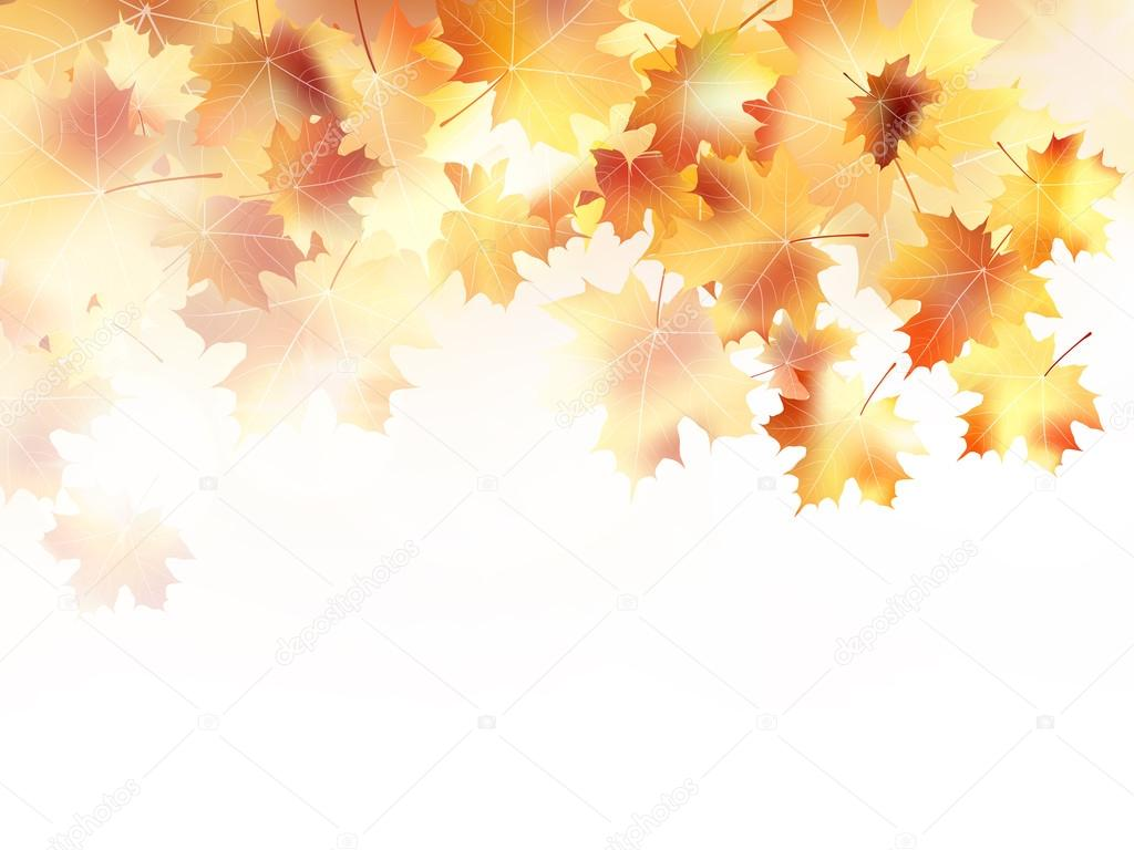 Beautiful autumn with maple leaves. plus EPS10