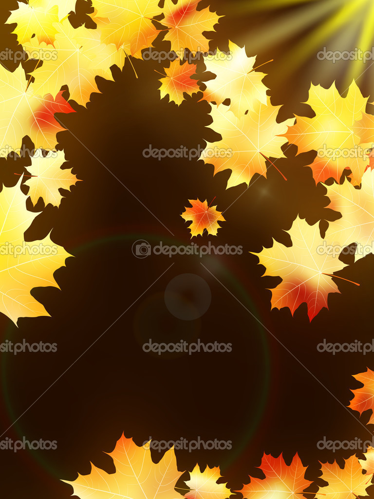 Autumn leaves on colorful. plus EPS10