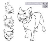 Photo Line art of French bulldog