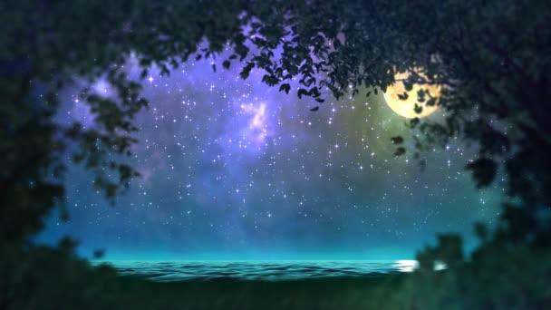 noc lesní smyčka