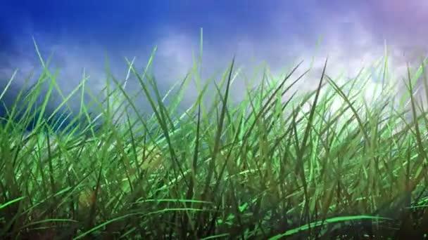 Zeitraffer bei Gras und Himmel