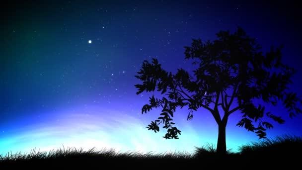 Night sky and tree loop
