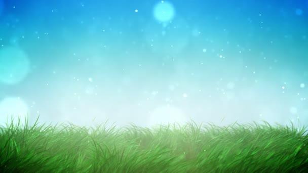 prosluněného trávníku smyčka