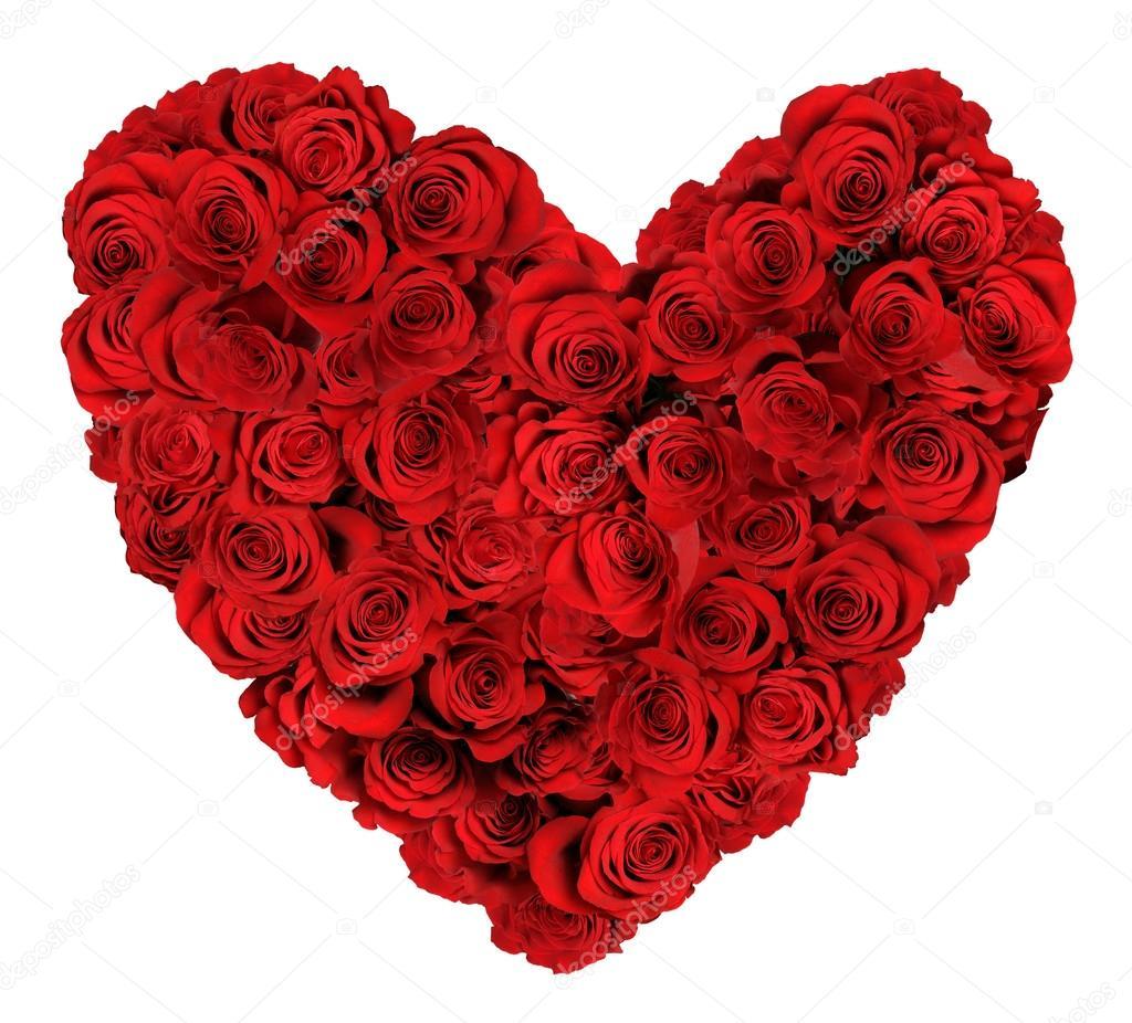 bouquet de roses en forme de coeur sur fond blanc — photographie