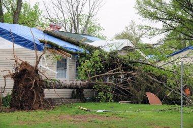 Tornado Damaged Homes