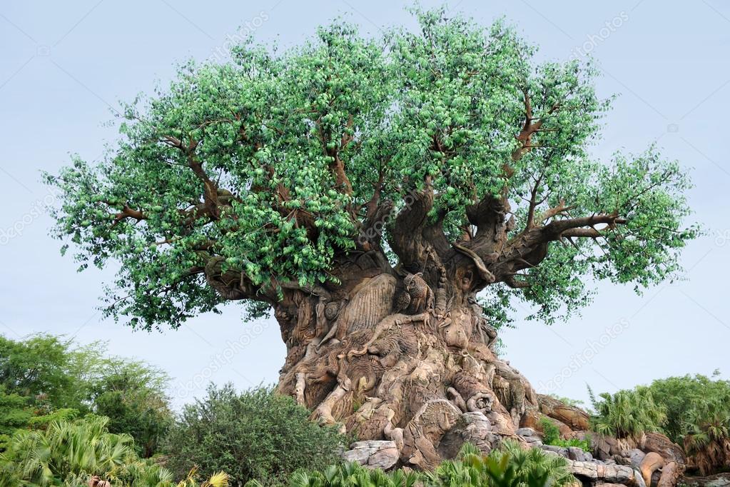 The Tree of Life at Disney World