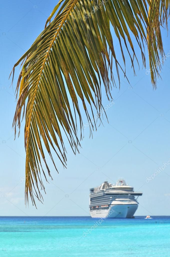 Palm Tree With Cruise Ship in Background