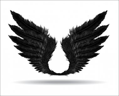 Dark styled wings from feathers. stock vector