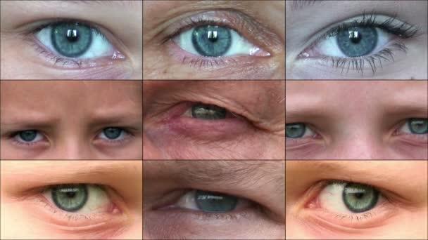 Složení lidských očí 2