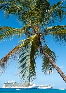 Cruise ships in cayman islands