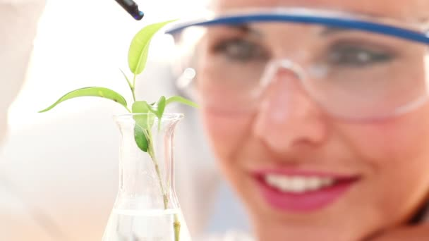Tudós végzett orvosi kutatások a növény