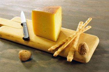 Pecorino toscano, italian sheep cheese, typical of Tuscany stock vector