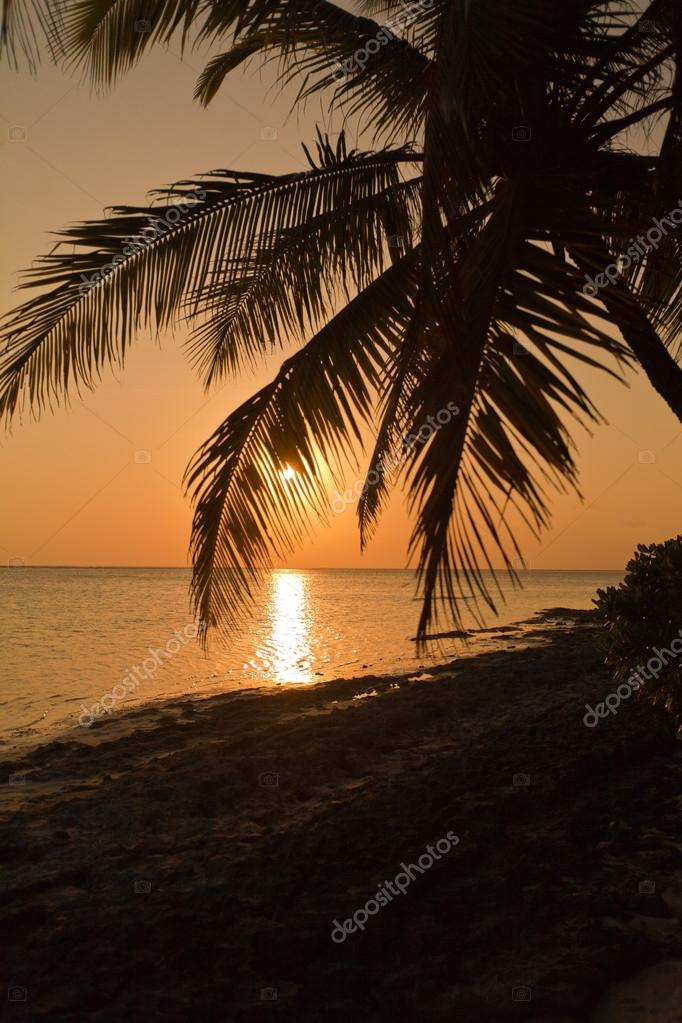 Tropical hot sunset