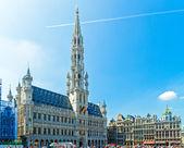 radnicí a cechovní domy, Brusel