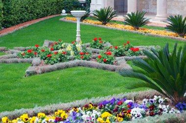 Flowers of Bahai Garden, Haifa, Israel stock vector