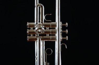 Nice trumpet