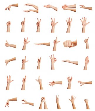 Collage of hands on white backgrounds stock vector