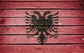albanian flag painted on old wood plank background
