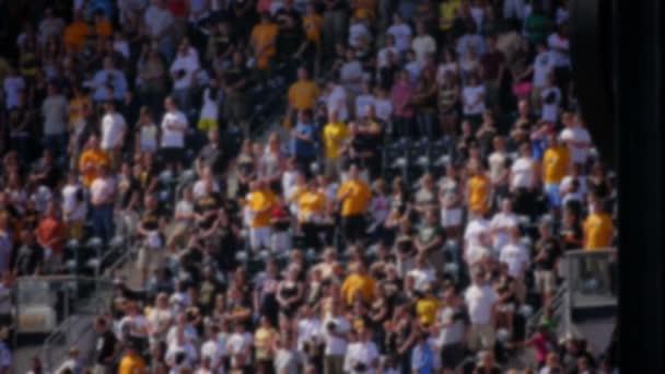Defocused Sports Fans