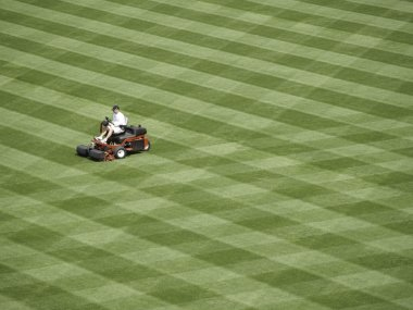 A lot to Mow