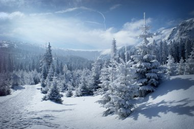 Winter scenery with snowy walley