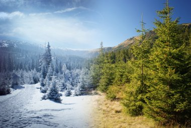 Winter and summer in mountains