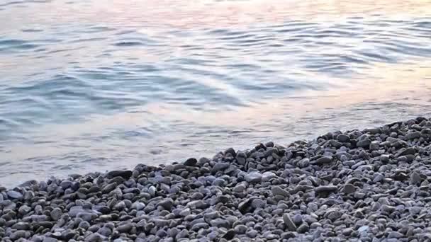 pobřeží zblízka